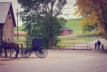 All Things Amish / by Sheryl Haun