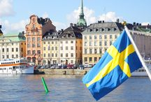 Scandinavian Language Translation Services / Legal, technical, medical and corporate business translation services from and into Finnish, Swedish, Danish, Icelandic, Norwegian. For details on legal translation services into Scandinavian languages visit: https://www.languagealliance.com/about-us/