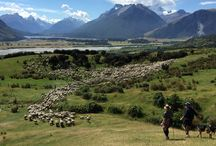 Discover New Zealand Dinner in the Woods Auction Package / Discover the breathtaking natural beauty of New Zealand on this 12-day, five-star adventure for two. Take a guided hike through the beech-forested, glacier-carved valleys of the Routeburn Track, indulge in the subtropical paradise of the Bay of Islands, take a helicopter tour and dine in a hidden valley at the Southern Alps at the renowned Minaret Station Alpine Lodge, and feel your heart skip a beat on a thrilling jet boat excursion on the Shotover River. Value: $16,000