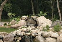 Jardin agua