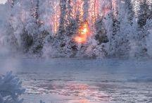 Auringonnousut