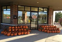 The Helen Oliveri Team's Pumpkin Pick Up 2015 / Hey friends, just want to say THANK YOU for an amazing event this weekend at my office in my hometown of Hawthorn Woods. It was really wonderful to see so many familiar faces and so many new ones. I look forward to continuing to help you with your real estate goals and I am so grateful for your unwavering support.  Selling real estate is what I do but serving you is my true passion. You have made me who I am and it's my turn to give back!!  ~Helen~