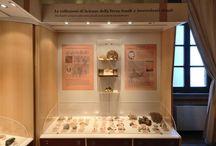 Geo-paleontologia in Umbria