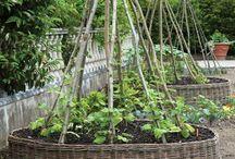 Gemüse- und Obstgarten