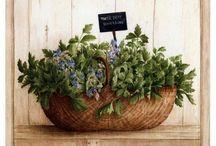 plantas vintage