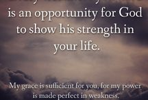 What the bible says / by Jim Barron