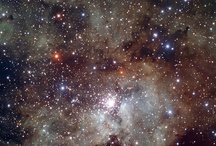 Star Light, Star Bright... / astronomy, stars, planets