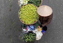 A Venture into Vietnam