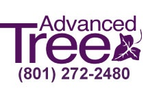 Advanced Tree Service / by Suzy Steed
