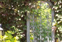 Mirrors in Gardens