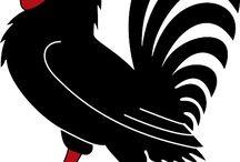 Hens & Roosters / Kury i koguty