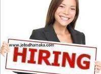 Pankaj shukla / Looking excellent job opportunities for fresher and Experience Find the latest vacancies and careers on Jobsdhamaka full and part time job openings in top companies