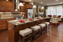 The Brownstones at Issaquah Highlands, WA / See the beautiful new 3- and 4-bedroom townhomes located at the urban center of the award-winning Issaquah Highlands! Discover open and bright living areas with sleek and functional kitchens, large living spaces and sizeable covered decks for outdoor living. From the curb to the cabinets - every detail at The Brownstones has been thoughtfully selected.