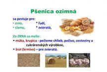 PRIRODOVEDA 3