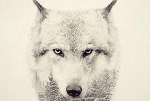 Wolf ✩totem✩