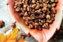 Autumn Recipes / Recipes for Autumn / pumpkin, pumpkin spice, cinnamon, autumn