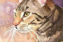 Illustrations de chat