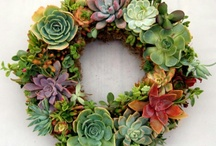 Wreaths and bunting