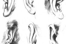 Dessins oreilles