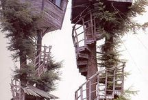 Like a Bird..Tree houses!!!!Or......