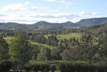 Megalong Zip / Megalong Zip : The greatest zip lines in Australia, launching in 2016