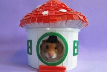 Hamster House / Casas para hamsters