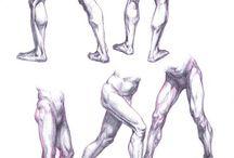 anatomy/nudes