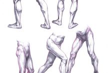 Anatomy  - Leg