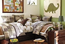 Ideas for Jimmy's Room / by Nicole O'Connor
