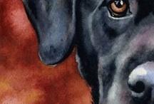 aquarel honden