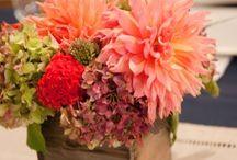 Wedding Ideas for Jenna / My upcoming muptials / by Kris Ingram