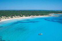 Mallorca's amazing locations / discover the island..