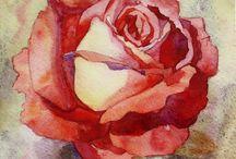akvarellrose