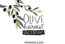 Olive Harvest Retreat - Umbria, Italy / To harvest means to gather. We bring nature, culture and community together for a unique weekend retreat at an eco, organic farmhouse in Umbria, Italy.  Connect with creative bloggers and small businesses, clarify your brand, get valuable feedback on your project. Embrace the beauty of Slow & Eco Living. October 23-25, 2015 More info: https://oreeko.com/olive-harvest-retreat/