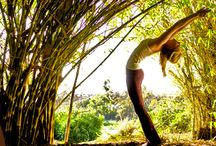 Yoga Classes & Retreats in Costa Rica / THE COSTA RICA PURA VIDA YOGA VACATION IN SANTA TERESA IS FOR EVERY WOMAN THAT WANTS TO STAY HEALTHY AND ENJOY LIFE.
