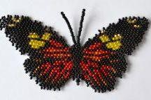 Schema peyote farfalle