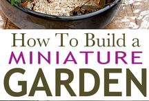 How To Build a #MiniatureGarden