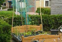creatieve tuin iedeen