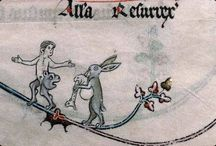 My brave bunnies