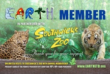 Earth Ltd. / A non-profit organization at Southwick's Zoo. We offer memberships with unlimited visits to the zoo, after-hours events, zoomobiles to your school, internships, docent training, and summer programs for kids in grades K - 8. / by Southwick's Zoo