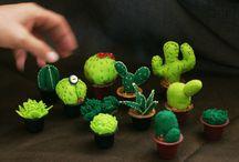 cactus & co. / Cactus felt, succulent, piante grasse, party favor