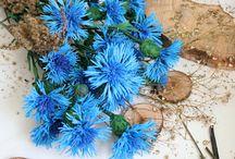 Фоамиран, цветы из фоамирана