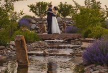 Dream Wedding  / by Shelbey Orme
