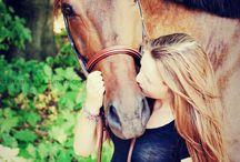 i m horse