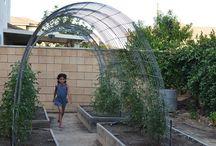 ogrody działkowe