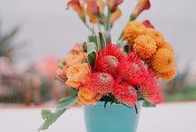 Colour: Orange/Coral