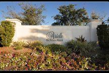 Arielle / Arielle in Palmer Ranch, Sarasota Florida