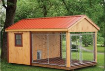 Dog kennel's ideas