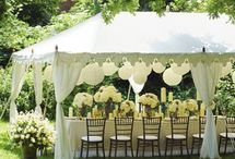 Themed Party Decor