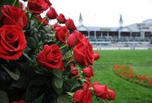 """Derby"" Lou, KY My Hometown! / Yes, born, raised in Louisville, KY Alumni from 2012 BB Champions U of K. Love Derby and all its pageantry!"